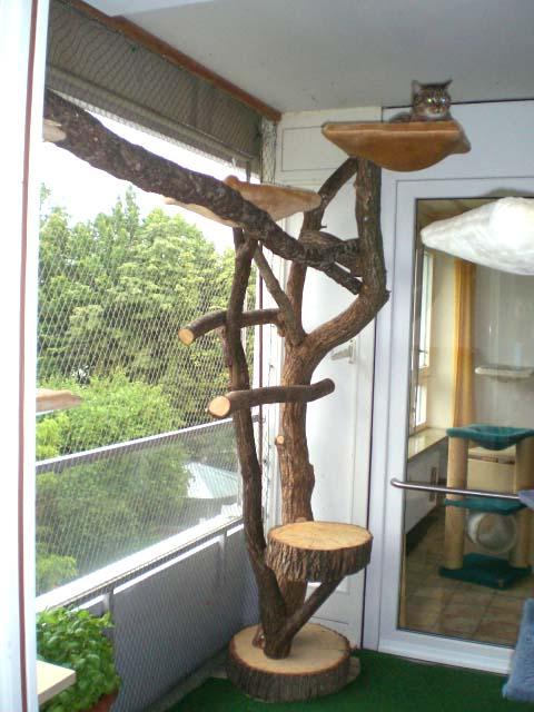 naturkratzbaum katzenoase das original